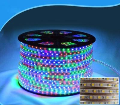 bobine de ruban LED multicolore 220 Volts