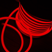 50m Néon LED Flexible Dimmable 220V ROUGE